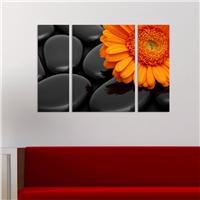Turuncu Çiçek Desen Duvar Panosu